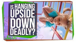 Download Can Hanging Upside Down Kill You? Video