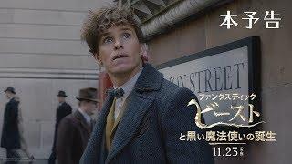 Download 映画『ファンタスティック・ビーストと黒い魔法使いの誕生』本予告【HD】2018年11月23日(金・祝)公開 Video
