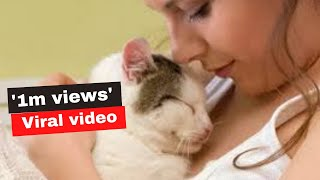 Download Here's What It Really Means When Your Cat Curls Up With You For Cuddles Video