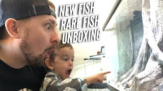 Download 320 GALLONS - AQUARIUM FISH UNBOXING - NEW AFRICAN CICHLIDS - RARE FISH | Jay Wilson Video