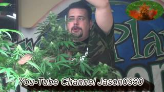 Download 2010 Back to Grow Basics PPM=TDS + PH What? Video