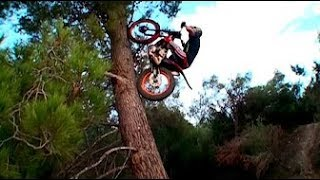 Download Best Trial Bike Stunts Video