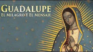 Download Desde el cielo una hermosa mañana la Guadalupana bajo al Tepeyac Video