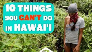 Download What it's REALLY like living in Puna on the Big Island of Hawaii (Funny but True) Video