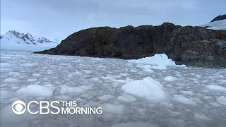 Download Climate Diaries: Antarctica ice melting at an ever quicker rate Video