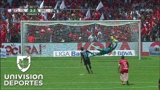 Download ¿Gol...penal... que el árbitro se decida Video