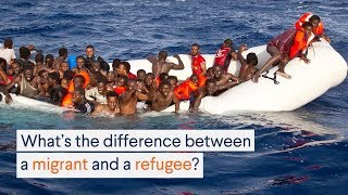Download The Difference Between a Migrant and a Refugee Video