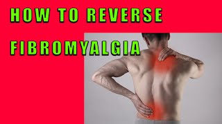 Download How to Reverse Fibromyalgia Video