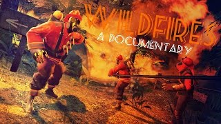 Download Wildfires! Video