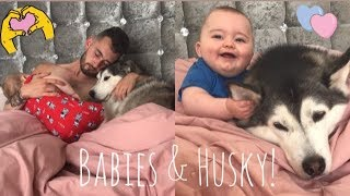 Download My Husky thinks she is my babies Mum!! Video