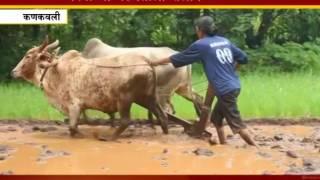 Download कोकण नाऊ स्पशेल - इलेक्ट्रिकल इंजीनियर रीना करतेय शेती Video