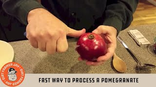 Download Fast Way to Process a Pomegranate Video