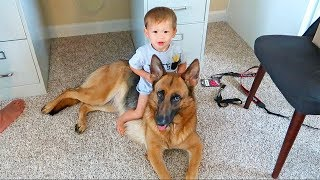 Download The Kids Want A Puppy! Video