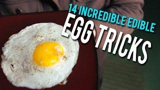 Download 14 Incredible Edible EGG Tricks! Video