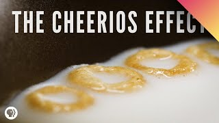 Download The Cheerios Effect Video