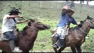 Download Camino del viejo Rancho Video