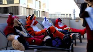 Download Peanut Butter Jelly (Furry Music Video) Video