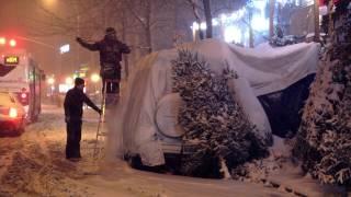 Download Tree Man - Trailer Video