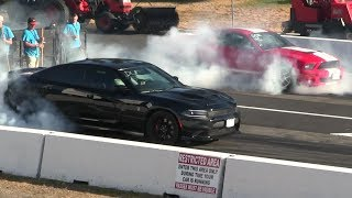 Download Shelby gt500 vs Hellcat Charger - drag race Video