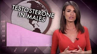 Download Faith Goldy: Is Soy Feminizing the West? Video