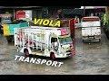 Download Cantiknya Truk Isuzu Elf Modif VIOLA Transport Video