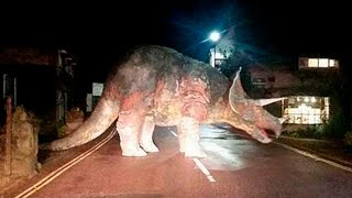 Download 10 DINOSAURS CAUGHT ON CAMERA IN REAL LIFE Video