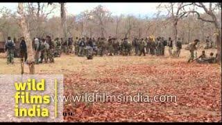 Download Naxal attack in Sukma Video