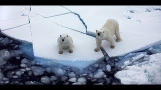 Download Franz Josef Land, Russia Video