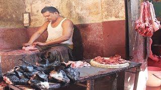 Download Goat Head Cutting Video | Travel Bangla 24 | Lamb Head Cleaning Video