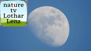 Download Nikon coolpix P900 83x optical zoom world record - video test on moon Video