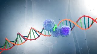 Download PARP-inhibitors: A New Generation of Cancer Drugs Video