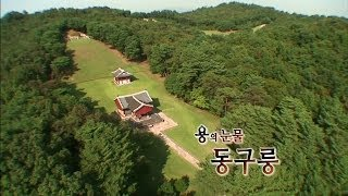Download 조선왕릉 1부, 용의 눈물, 동구릉 Video