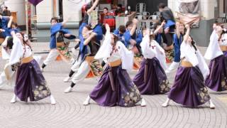Download Beautiful Traditional Japanese Dance Video