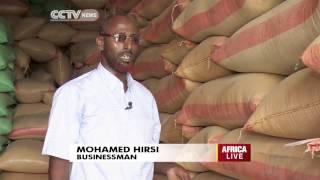 Download Somalia's Huge Potential in Sesame Farming Video