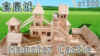 Download 【DIY】💥倉鼠城堡🏰 Hamster Castle 找不到公主的王子鼠們 :3 Video