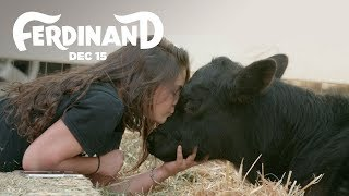 Download Ferdinand | The Gentle Barn Rescues A Bull | 20th Century FOX Video