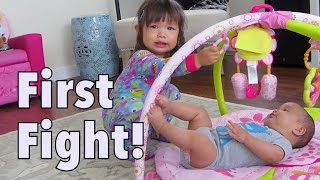 Download Their first ever sister fight - August 25, 2014 - itsJudysLife Daily Vlog Video