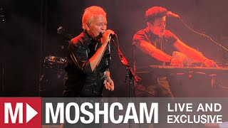 Download Icehouse - Hey Little Girl (Live in Sydney) | Moshcam Video