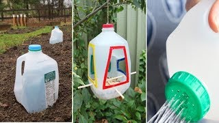 Download You Will Never Throw Away Used Milk Jugs After Watching This Video