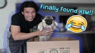 Download CAUGHT MY PUPPY!! Video