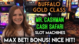 Download First Try on Buffalo Gold Class Slot Machine! Max Bet Train BONUS! Video
