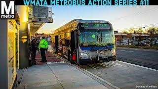 Download WMATA Metrobus Action Series #11 Video