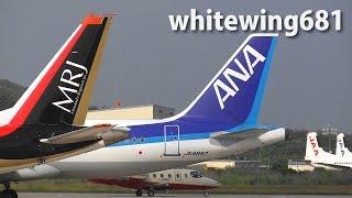 Download [ANA A320 & Mitsubishi MRJ] ANA Airbus A320 JA8997 LANDING NOTO Airport 能登空港 2016.6.17 Video