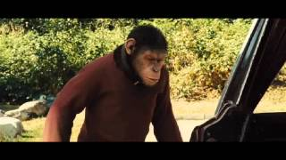 Download Rise of the planet of the apes What i've done Video