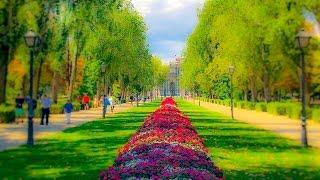 Download A Walk Around The Paseo Del Prado Neighborhood, Madrid Video