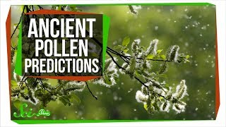 Download How Ancient Pollen Can Predict The Future Video