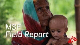 Download Targeting a Root Cause of Malnutrition in Pakistan Video