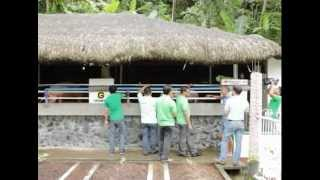 Download Babuyang Walang Amoy/Natural Hog Raising/Profitable Innovative Growing System in Bicol Part 2 Video