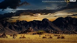 Download Nat Geo Wild Nature Documentary Wildlife Animal Discovery Channel Animals # 2016 HD 2 Video