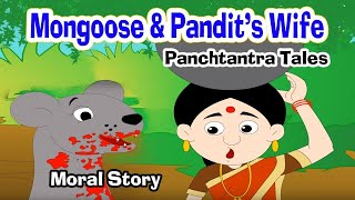 Download Loyal Mongoose - Moral Stories | Story in English | Panchatantra Stories | Kids Story | Cartoon Video